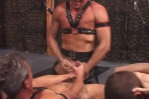 twink raw In Sex Swing