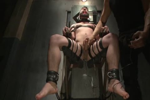 Flogged, Electrified, And banged