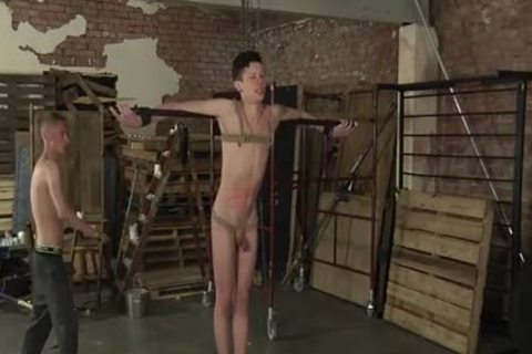 lascivious Xavier receives Punished By Ashton