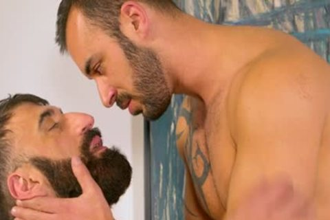 Bearded hairy Muscle Bear blows Some Tool blows Some Bum For A nice Facial