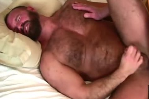 Daddy Bears pound In bed