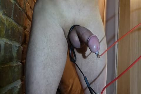 Part.two Electro 10-Pounder Rosebud ass Glans cum No Hands
