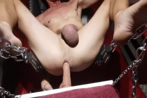 Swinging sex dildo In The Sling