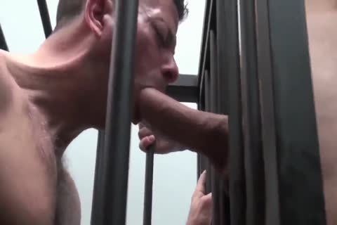 ROCCO STEELE-CAGET DOG biggest knob EATER