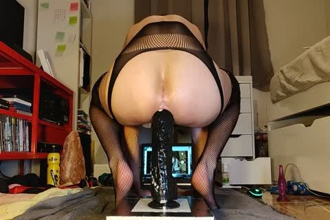 Mister Cate bonks His wazoo With A big sex toy In horny stockings