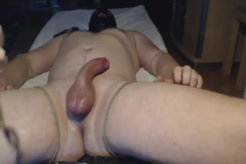Ballbusting lad gets A handjob while fastened Up