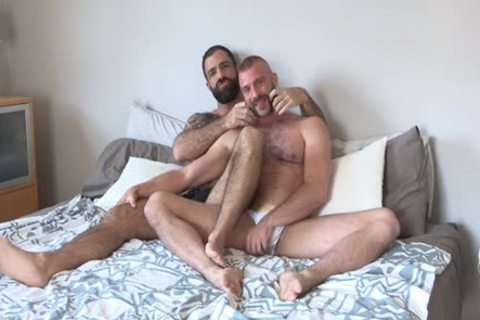 Two hairy Bearded fellows Having lovely enjoyment
