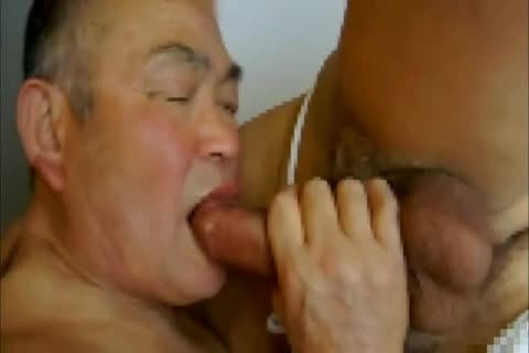 older Japanese Daddy And grand-dad Flip plow #2
