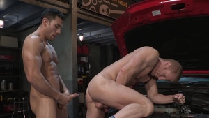 Hot House - American Johnny V is really stallion swinger